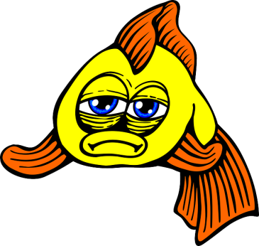 fish-161031_640.png