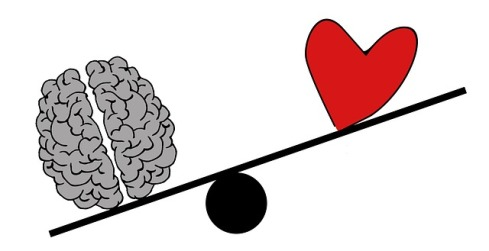 brain-2146167_640